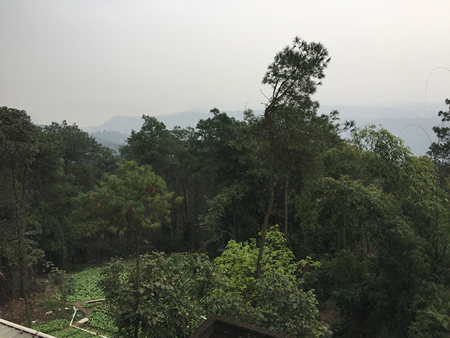 松翠园景色